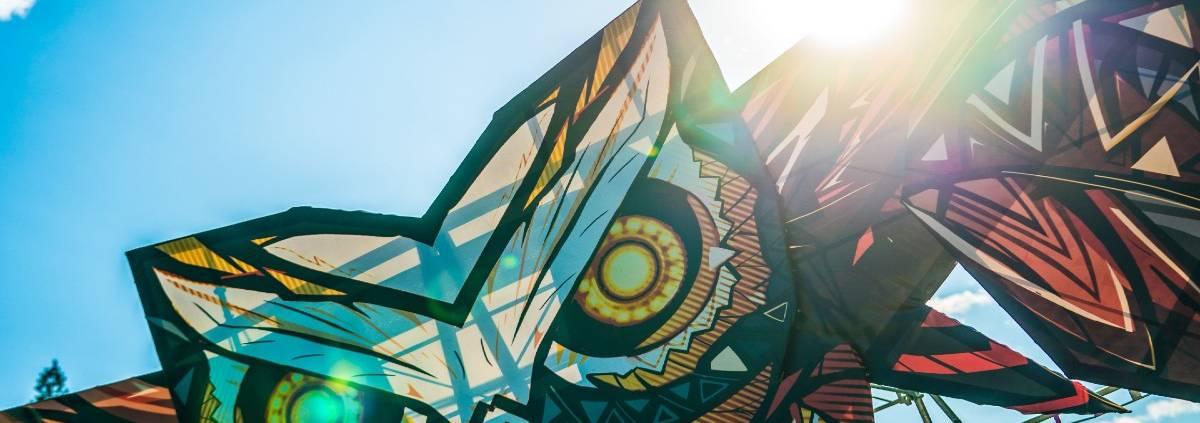 Owl Festival 2019